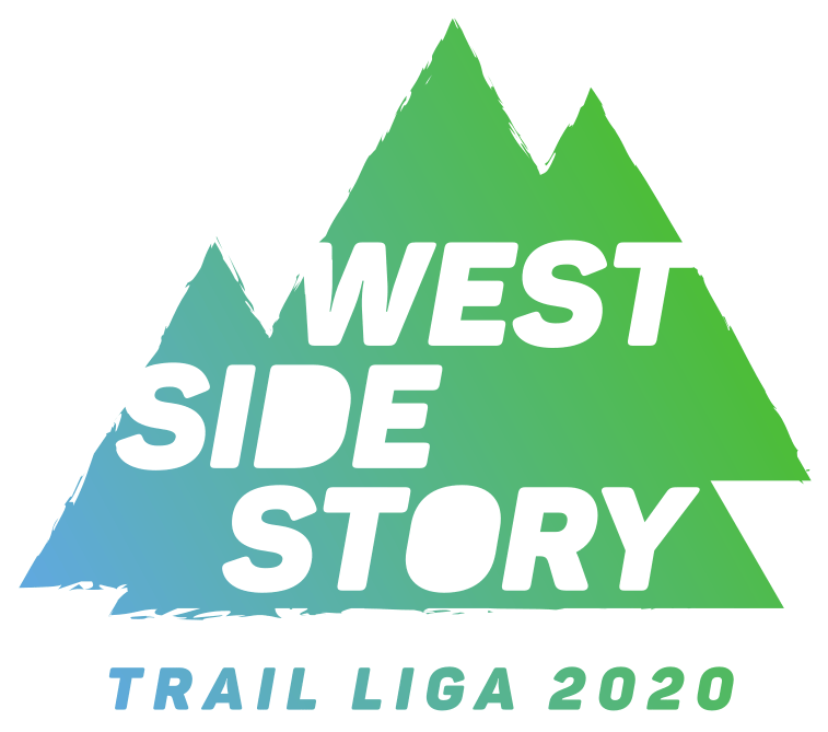 WSS_logo_web_kategorija